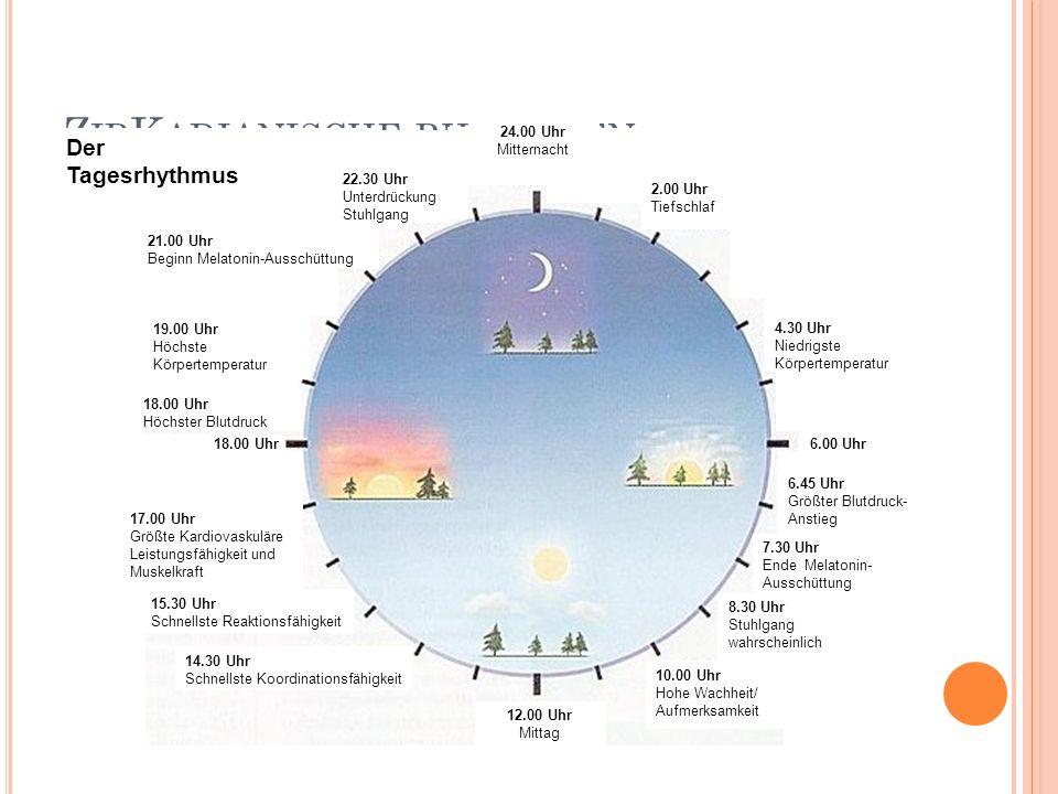 Z IR K ADIANISCHE RHYTHMEN Der Tagesrhythmus 4.30 Uhr Niedrigste Körpertemperatur 6.45 Uhr Größter Blutdruck- Anstieg 6.00 Uhr 7.30 Uhr Ende Melatonin