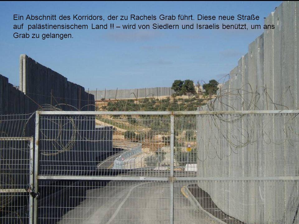 Ein Abschnitt des Korridors, der zu Rachels Grab führt. Diese neue Straße - auf palästinensischem Land !! – wird von Siedlern und Israelis benützt, um