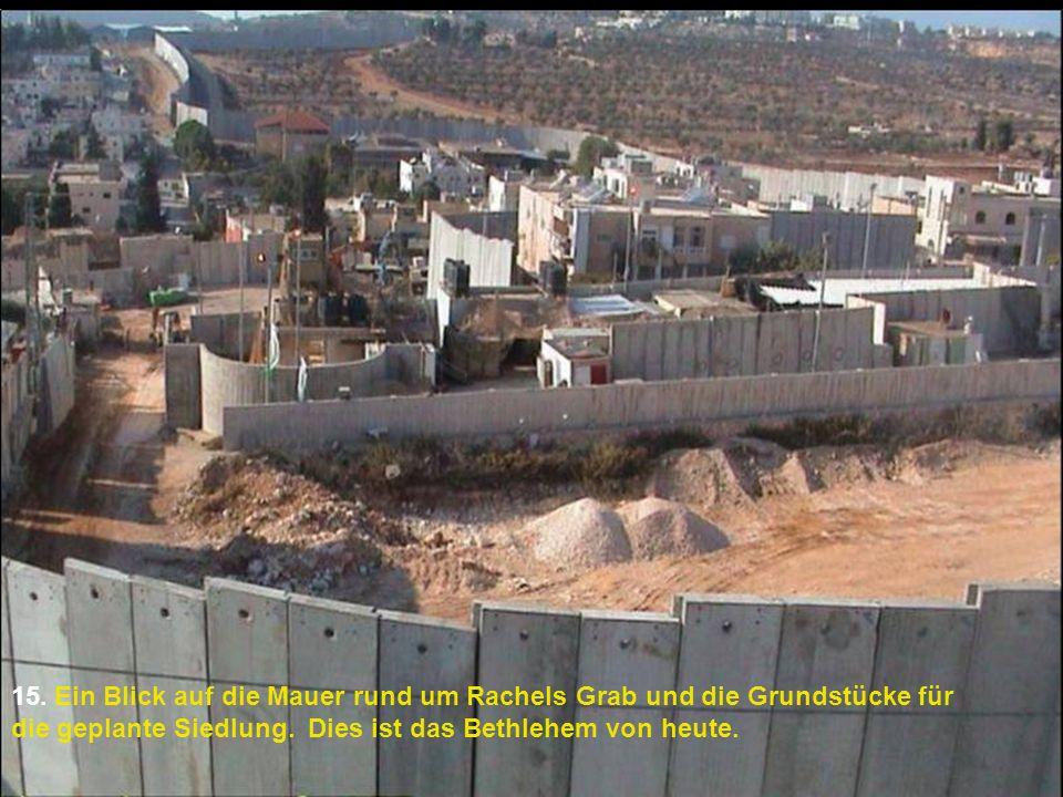 15. Ein Blick auf die Mauer rund um Rachels Grab und die Grundstücke für die geplante Siedlung. Dies ist das Bethlehem von heute.