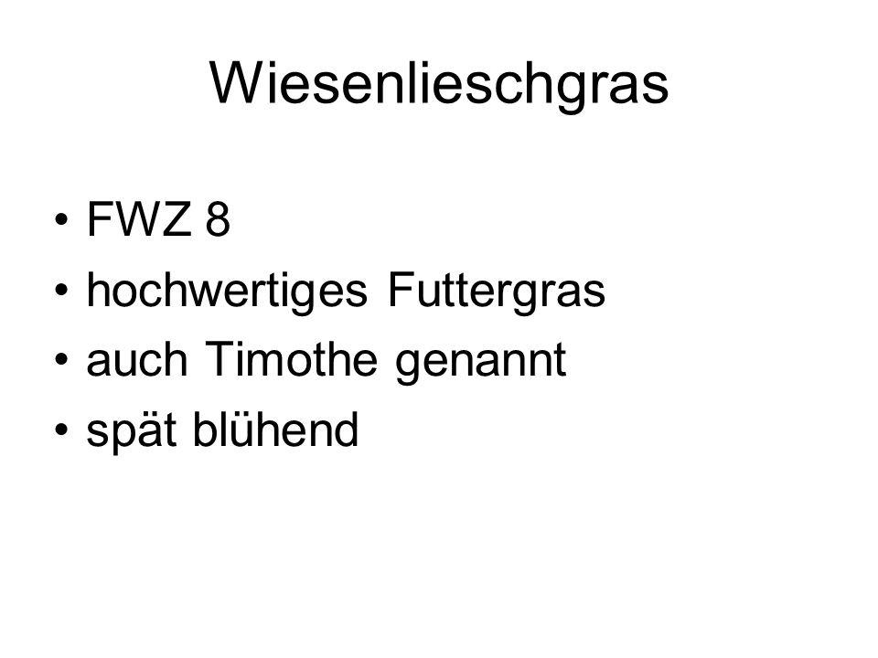 Wiesenlieschgras FWZ 8 hochwertiges Futtergras auch Timothe genannt spät blühend