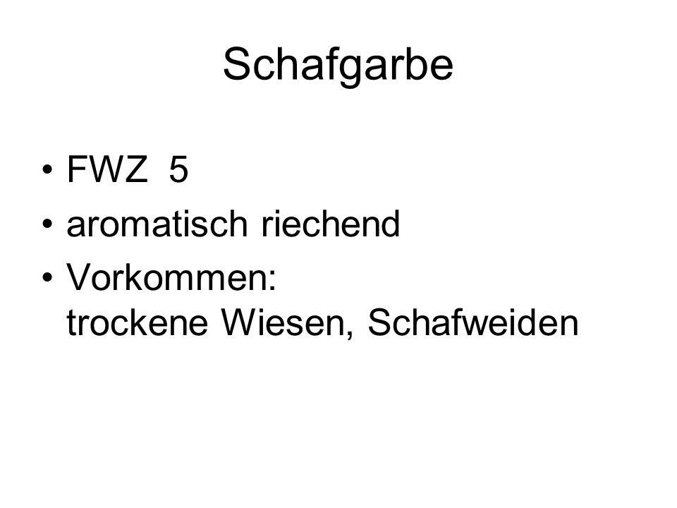 Schafgarbe FWZ 5 aromatisch riechend Vorkommen: trockene Wiesen, Schafweiden