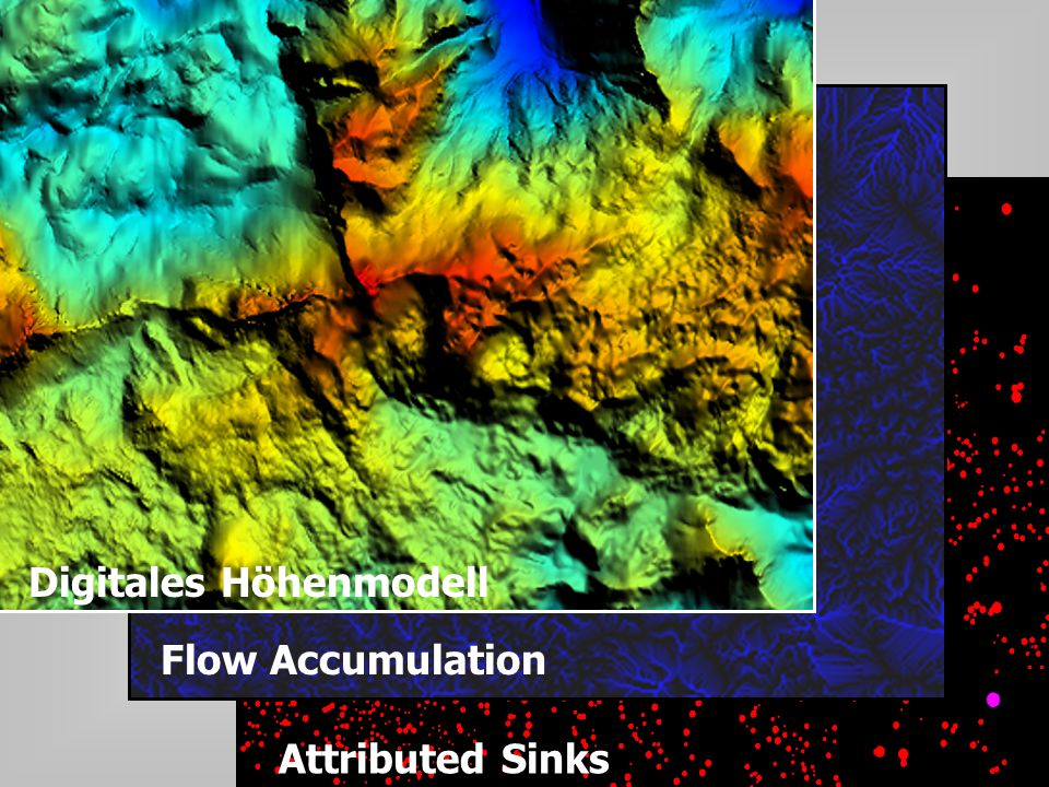 Digitales Höhenmodell Flow Accumulation Attributed Sinks