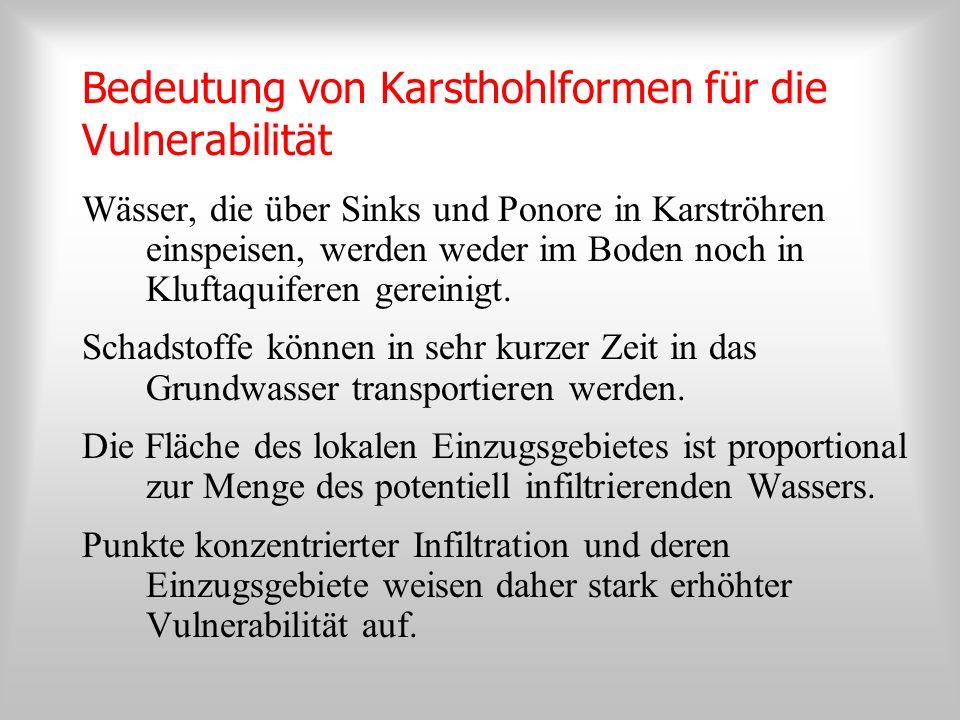 Karstmorphologie und Infiltration haben bei Vulnerabilitätskartierungen hohen Stellenwert PI-Methode (Goldscheider et al., 2000) Multikriterien-Methode-EPIK (Doerflinger et al., 1999) Österreichisches Konzept für Hochalpinen Karst (Cichocki & Zojer, 2001)