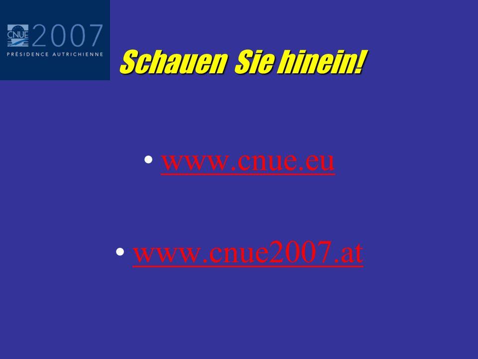 Umsetzung und Ausblick Bis zur CNUE-Versammlung am 14.12.2006: Benennung von Ansprechpersonen durch nationale Notariatsorganisationen gegenüber CNUE 2