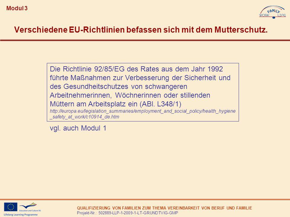 QUALIFIZIERUNG VON FAMILIEN ZUM THEMA VEREINBARKEIT VON BERUF UND FAMILIE Projekt-Nr.: 502889-LLP-1-2009-1-LT-GRUNDTVIG-GMP Verschiedene EU-Richtlinie