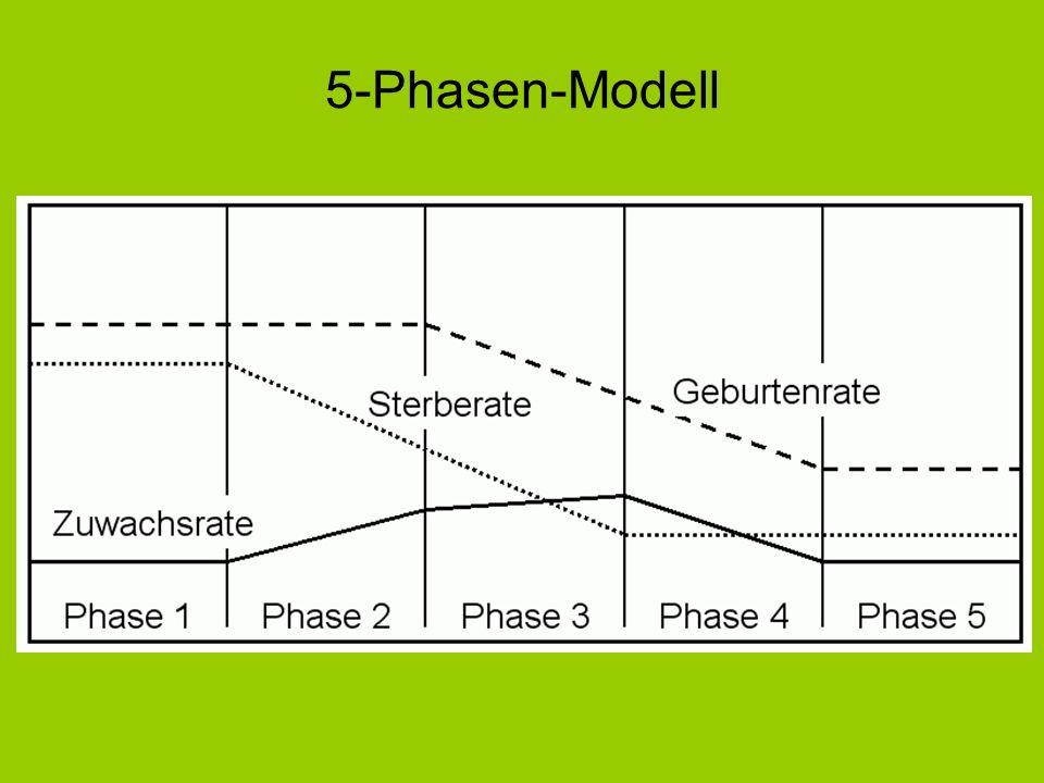 5-Phasen-Modell