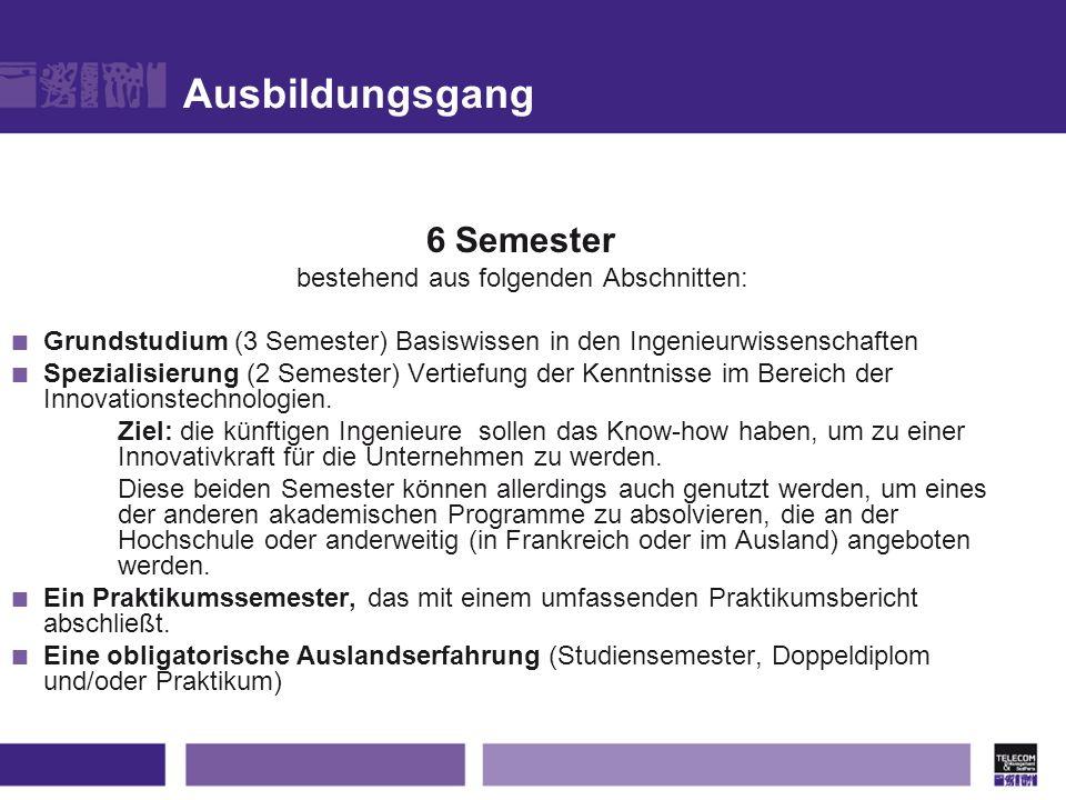 Ausbildungsgang 6 Semester bestehend aus folgenden Abschnitten: Grundstudium (3 Semester) Basiswissen in den Ingenieurwissenschaften Spezialisierung (