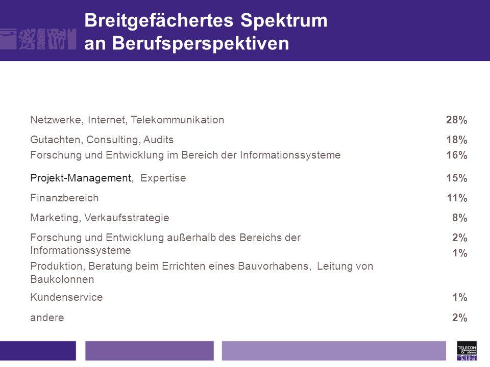 Netzwerke, Internet, Telekommunikation28% Gutachten, Consulting, Audits Forschung und Entwicklung im Bereich der Informationssysteme 18% 16% Projekt-M