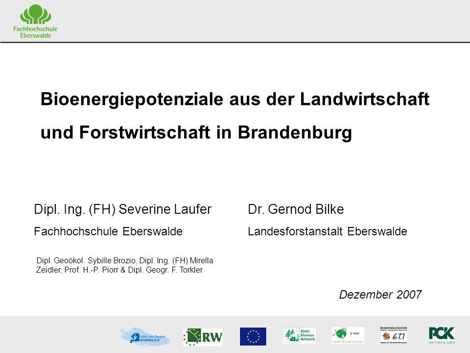 S.Laufer FH Eberswalde G.