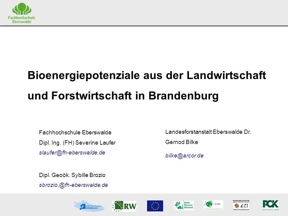 S. Laufer FH Eberswalde G. Bilke Landesforstanstalt Eberswalde Bioenergiepotenziale aus der Landwirtschaft und Forstwirtschaft in Brandenburg Fachhoch