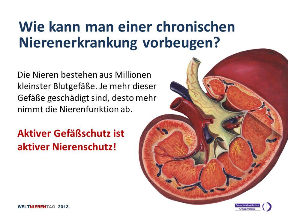 WELTNIERENTAG 2013 Die Nieren bestehen aus Millionen kleinster Blutgefäße. Je mehr dieser Gefäße geschädigt sind, desto mehr nimmt die Nierenfunktion