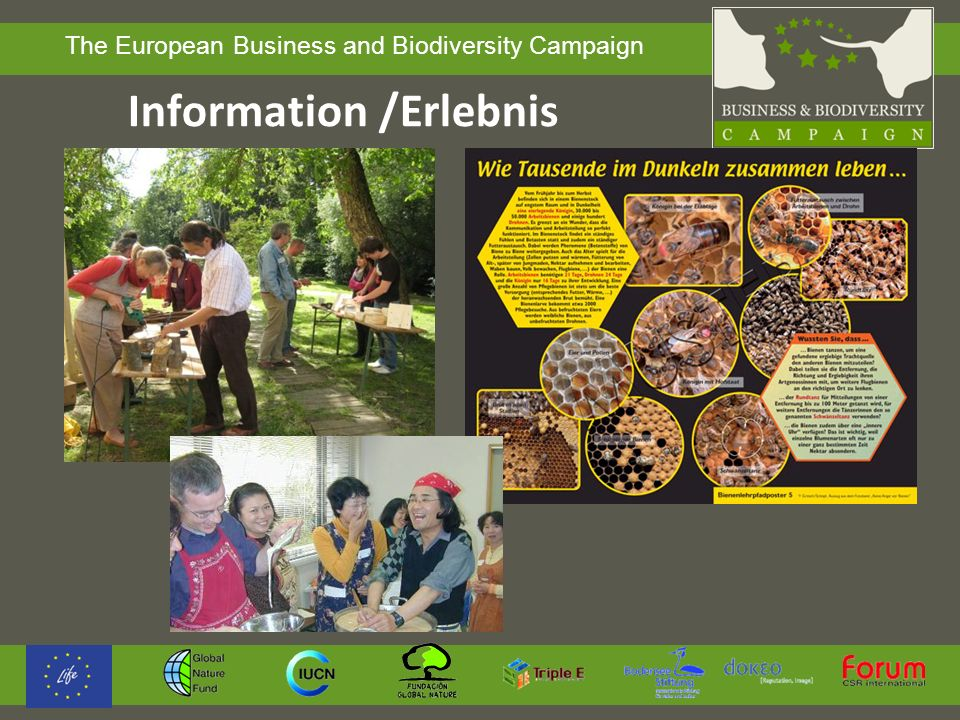 The European Business and Biodiversity Campaign Information /Erlebnis