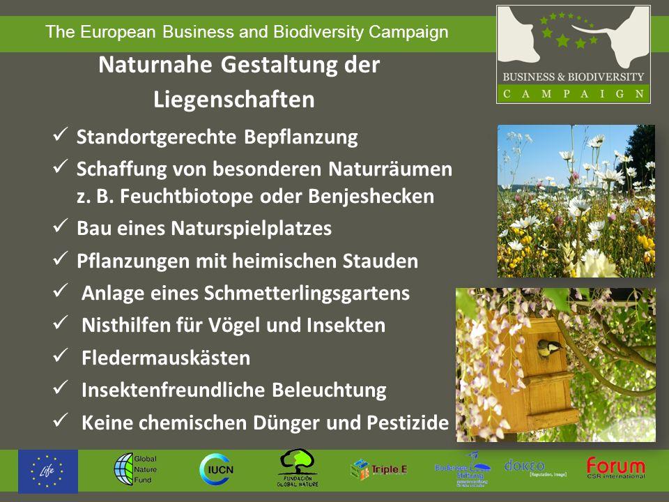 The European Business and Biodiversity Campaign Lieferkette /Dienstleistungen Die wichtigsten Produkte und Dienstleistungen analysieren Lieferanten /Dienstleister informieren und nachfragen, was sie für den Schutz der Biodiversität tun Kriterien zum Schutz der Biodiversität in Lieferanten- vorgaben aufnehmen Anzahl der Produkte mit Label erhöhen Produkte mit negativen Wirkungen auslisten
