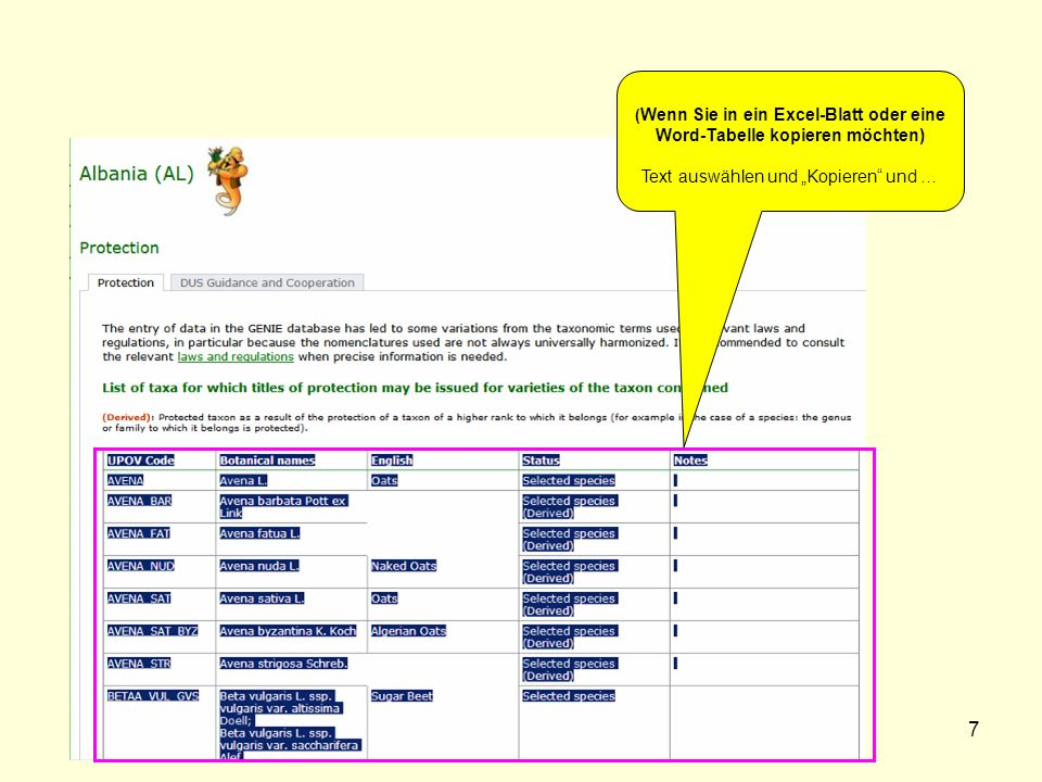 7 ( Wenn Sie in ein Excel-Blatt oder eine Word-Tabelle kopieren möchten) Text auswählen und Kopieren und …