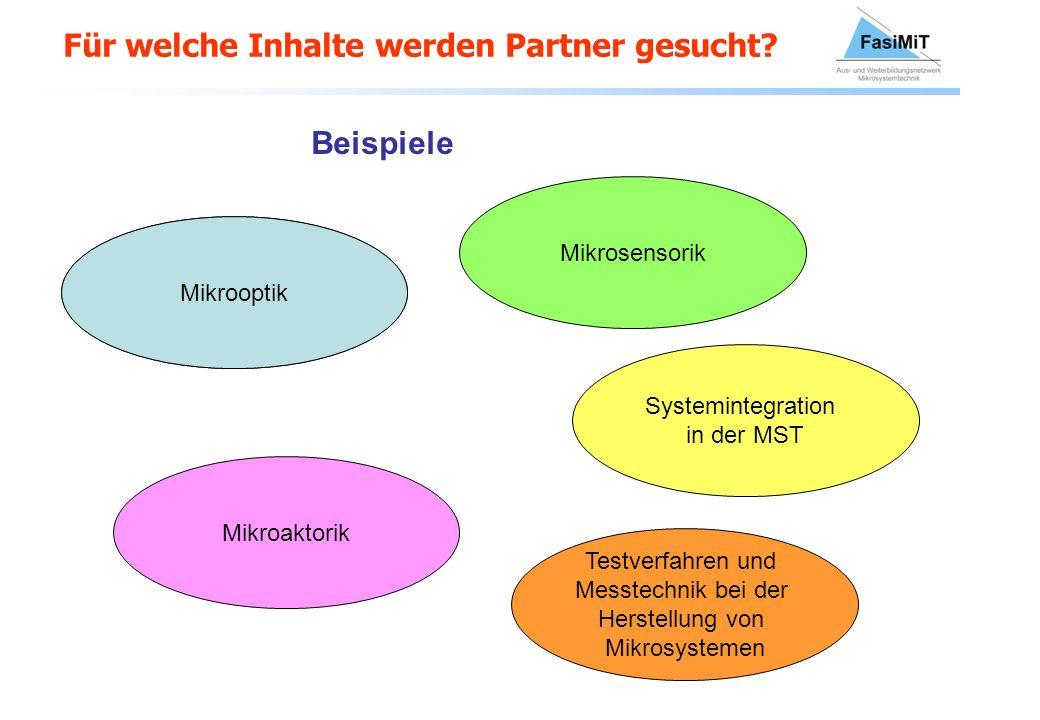Für welche Inhalte werden Partner gesucht? Mikrooptik Beispiele Mikrooptik Mikrosensorik Mikroaktorik Systemintegration in der MST Testverfahren und M