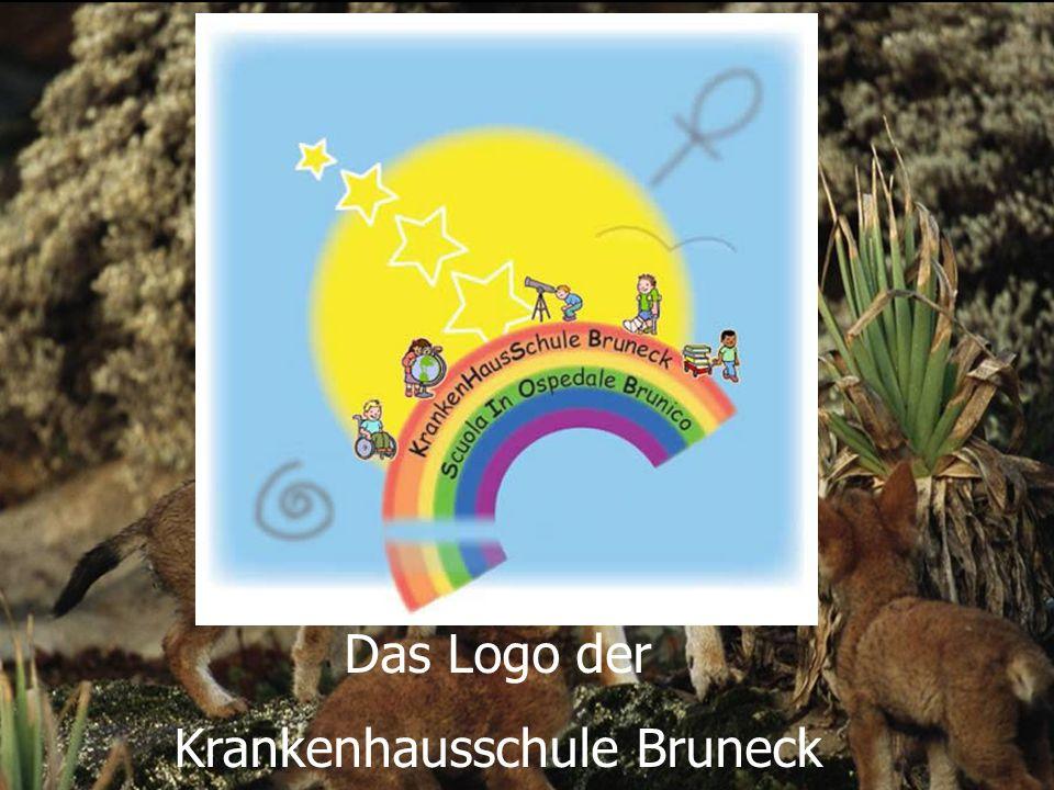 Das Logo der Krankenhausschule Bruneck