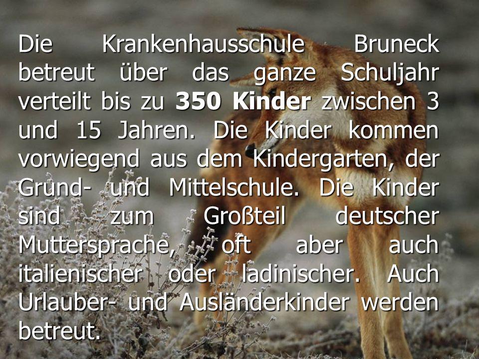Die Krankenhausschule Bruneck betreut über das ganze Schuljahr verteilt bis zu 350 Kinder zwischen 3 und 15 Jahren. Die Kinder kommen vorwiegend aus d