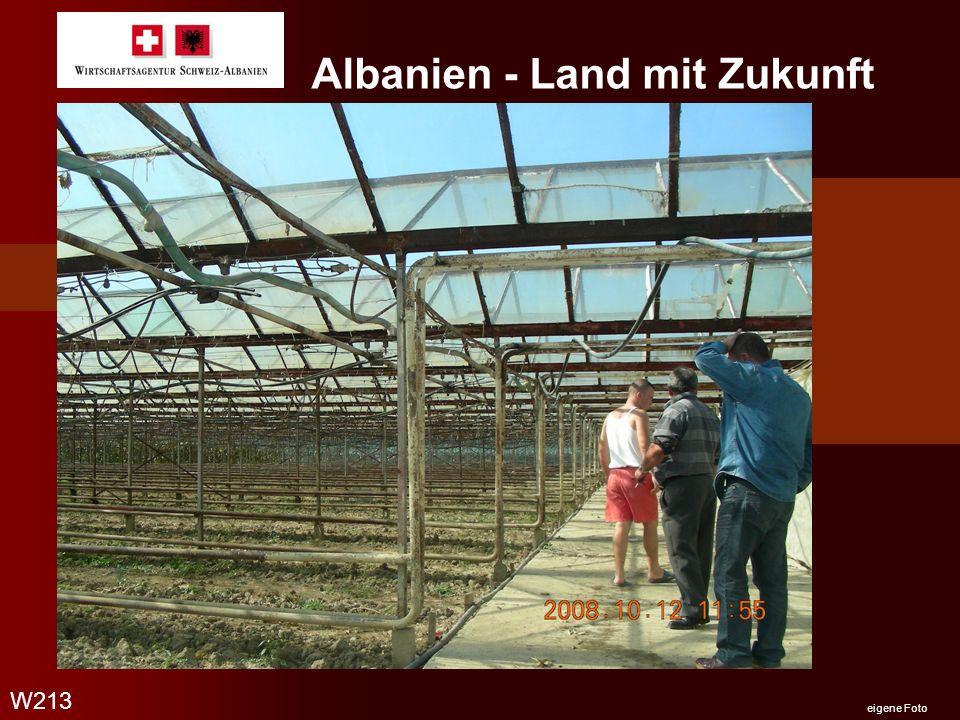 Albanien - Land mit Zukunft Ohrid See mit Blick auf Mazedonien W213 eigene Foto