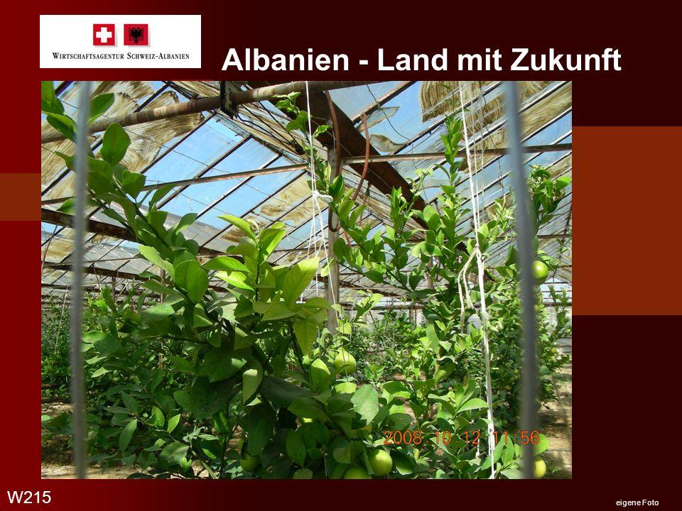 Albanien - Land mit Zukunft W215 eigene Foto