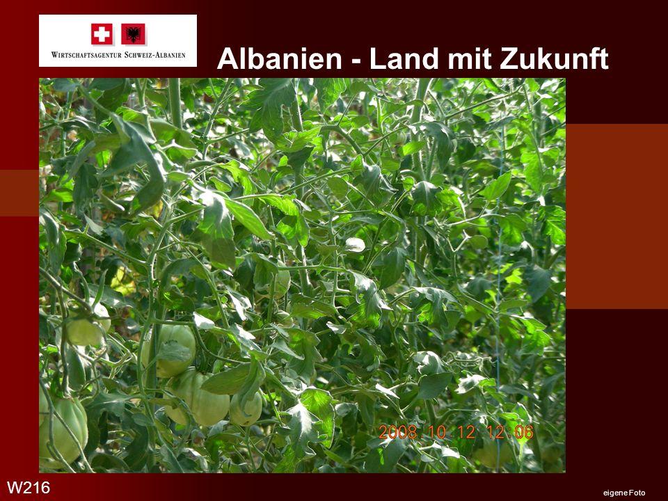 Albanien - Land mit Zukunft W216 eigene Foto