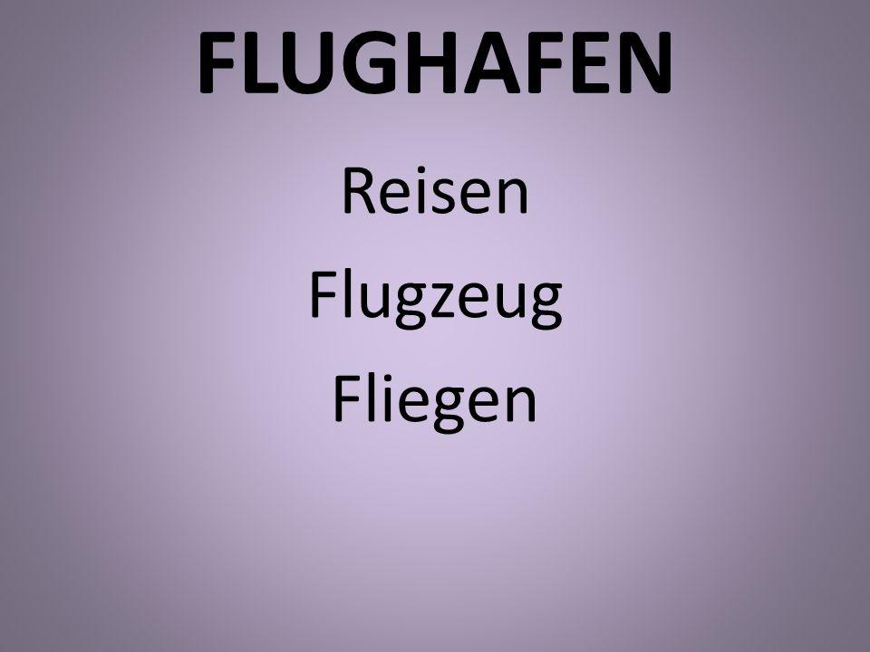 FLUGHAFEN Reisen Flugzeug Fliegen