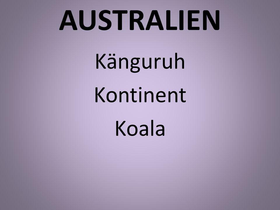 AUSTRALIEN Känguruh Kontinent Koala