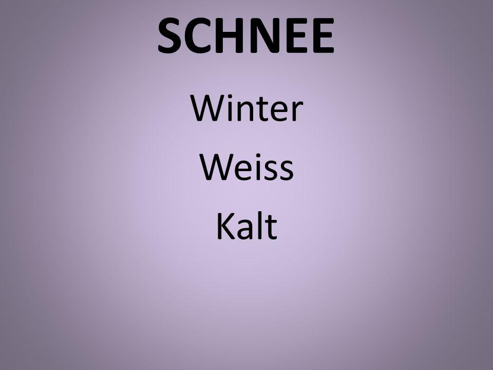 SCHNEE Winter Weiss Kalt