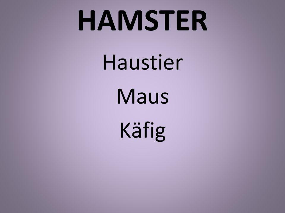 HAMSTER Haustier Maus Käfig