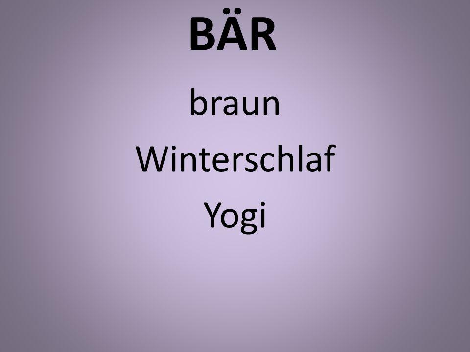 BÄR braun Winterschlaf Yogi