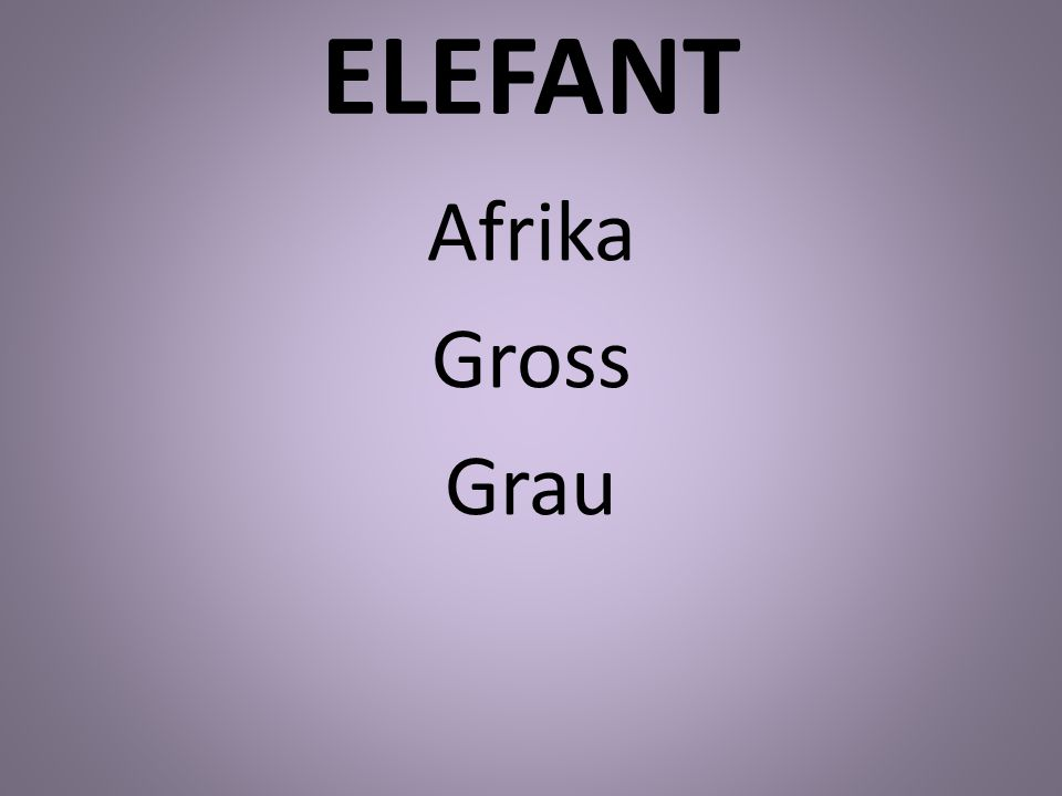 ELEFANT Afrika Gross Grau