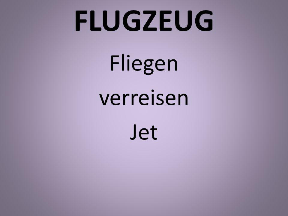 FLUGZEUG Fliegen verreisen Jet
