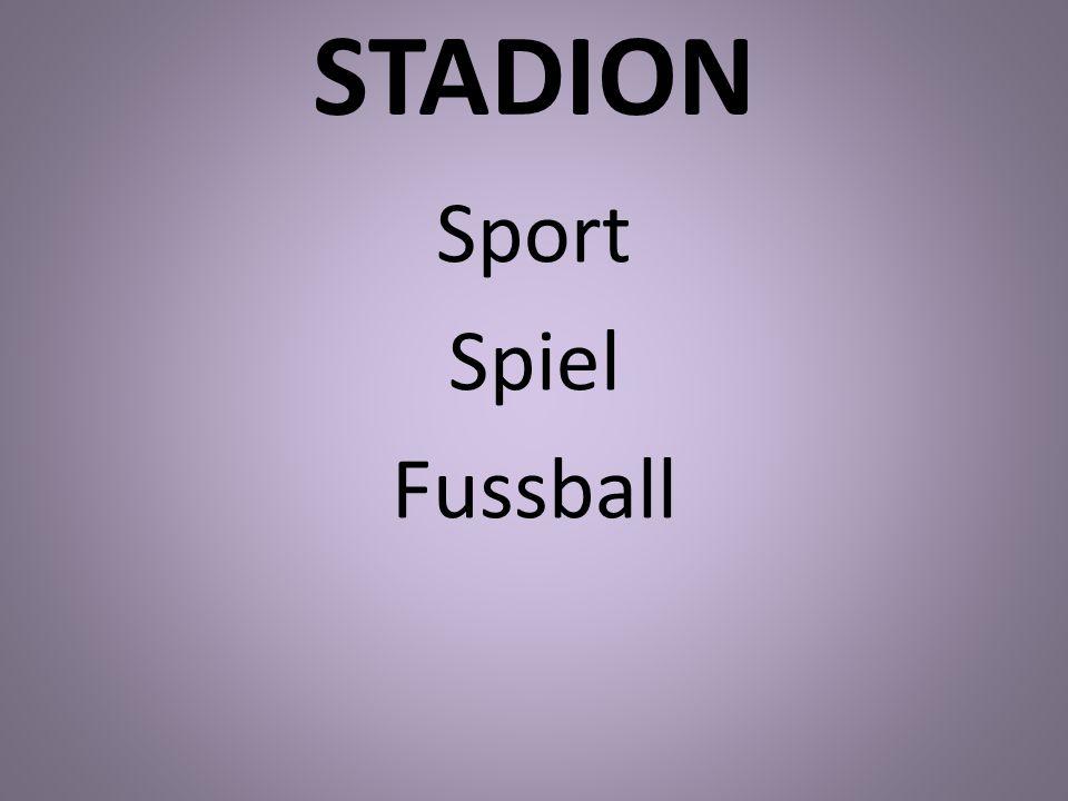 STADION Sport Spiel Fussball