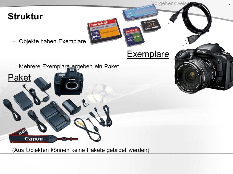 Struktur –Objekte haben Exemplare –Mehrere Exemplare ergeben ein Paket (Aus Objekten können keine Pakete gebildet werden) 7 Vorgehensweise Paket Exemp