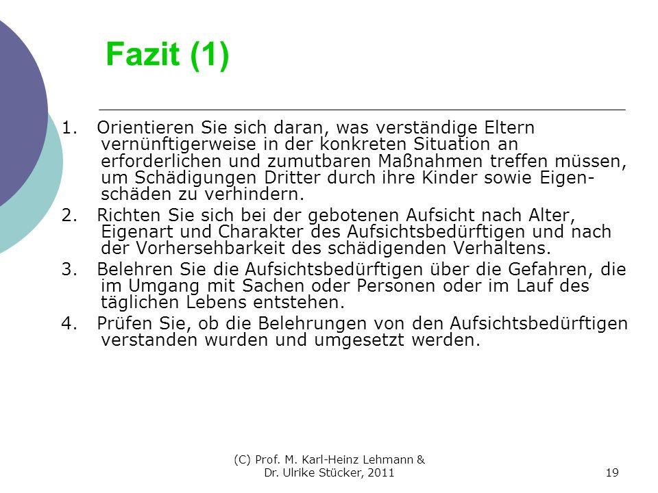 (C) Prof. M. Karl-Heinz Lehmann & Dr. Ulrike Stücker, 201119 Fazit (1) 1. Orientieren Sie sich daran, was verständige Eltern vernünftigerweise in der