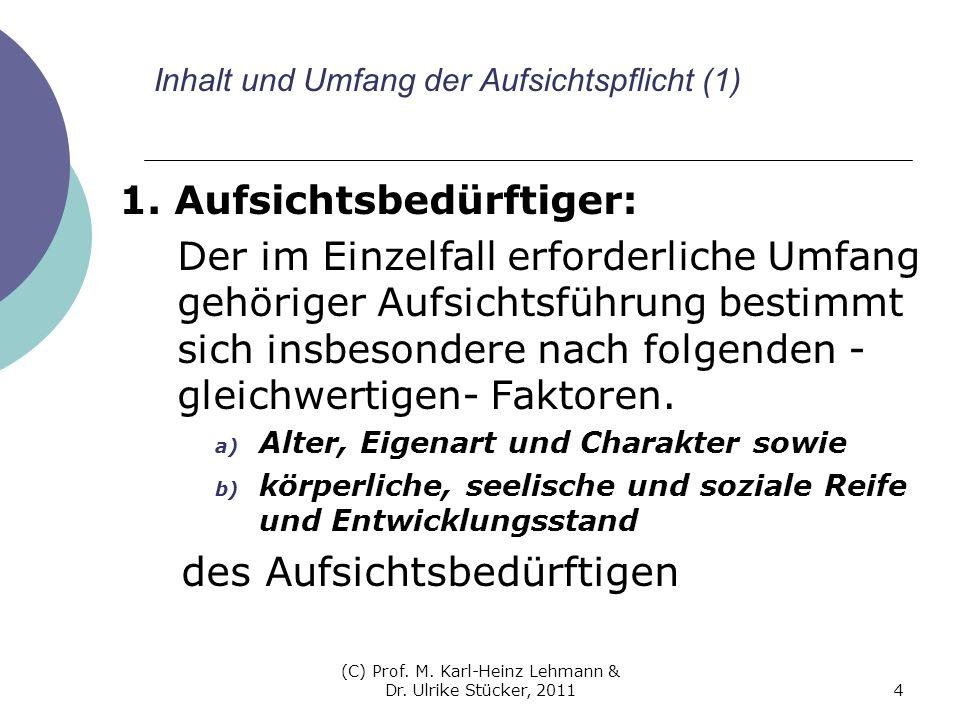 (C) Prof. M. Karl-Heinz Lehmann & Dr. Ulrike Stücker, 20114 Inhalt und Umfang der Aufsichtspflicht (1) 1. Aufsichtsbedürftiger: Der im Einzelfall erfo