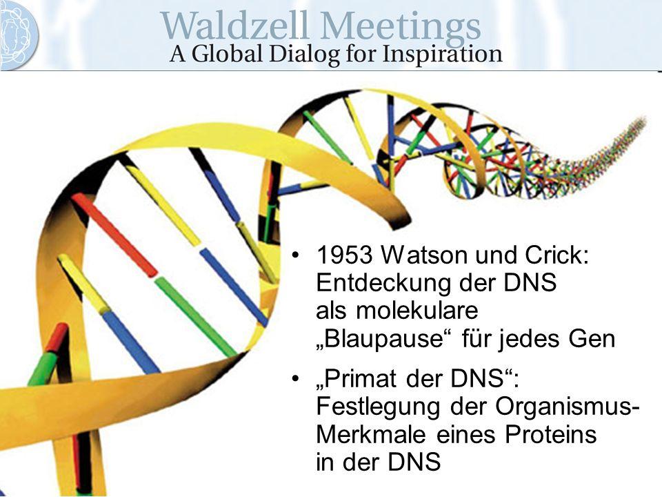 1953 Watson und Crick: Entdeckung der DNS als molekulare Blaupause für jedes Gen Primat der DNS: Festlegung der Organismus- Merkmale eines Proteins in