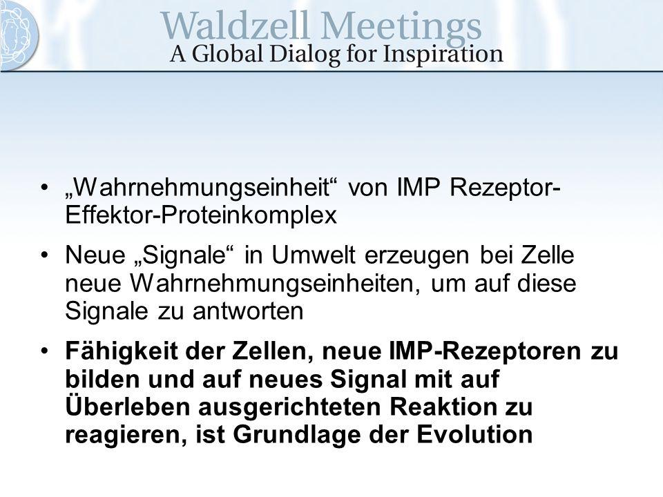 Wahrnehmungseinheit von IMP Rezeptor- Effektor-Proteinkomplex Neue Signale in Umwelt erzeugen bei Zelle neue Wahrnehmungseinheiten, um auf diese Signa