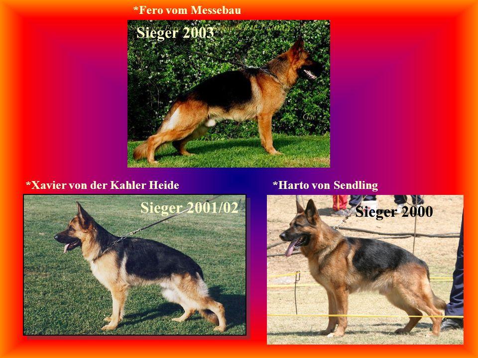 *Harto von Sendling Sieger 2001/02 *Xavier von der Kahler Heide Sieger 2003 *Fero vom Messebau Sieger 2000