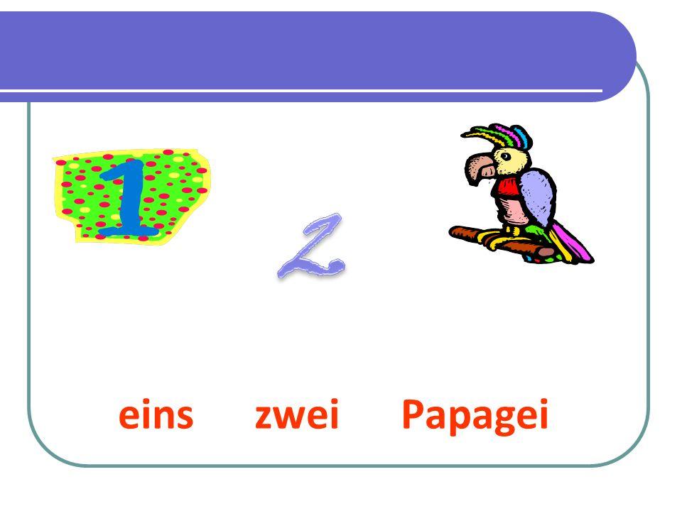 eins zwei Papagei