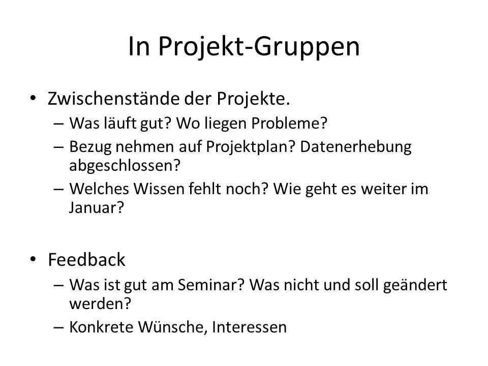 In Projekt-Gruppen Zwischenstände der Projekte. – Was läuft gut? Wo liegen Probleme? – Bezug nehmen auf Projektplan? Datenerhebung abgeschlossen? – We