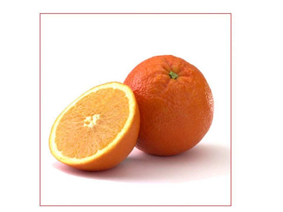 Mehr Obst das Ananaspineapple die Kirschecherry die Traubegrape die Aprikoseapricot die Pflaumeplum die Limonelime die Pampelmuse grapefruit das Mangomango