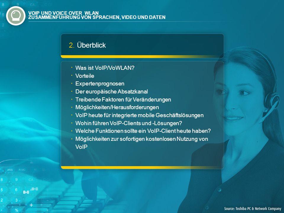 2. Überblick Was ist VoIP/VoWLAN? Vorteile Expertenprognosen Der europäische Absatzkanal Treibende Faktoren für Veränderungen Möglichkeiten/Herausford