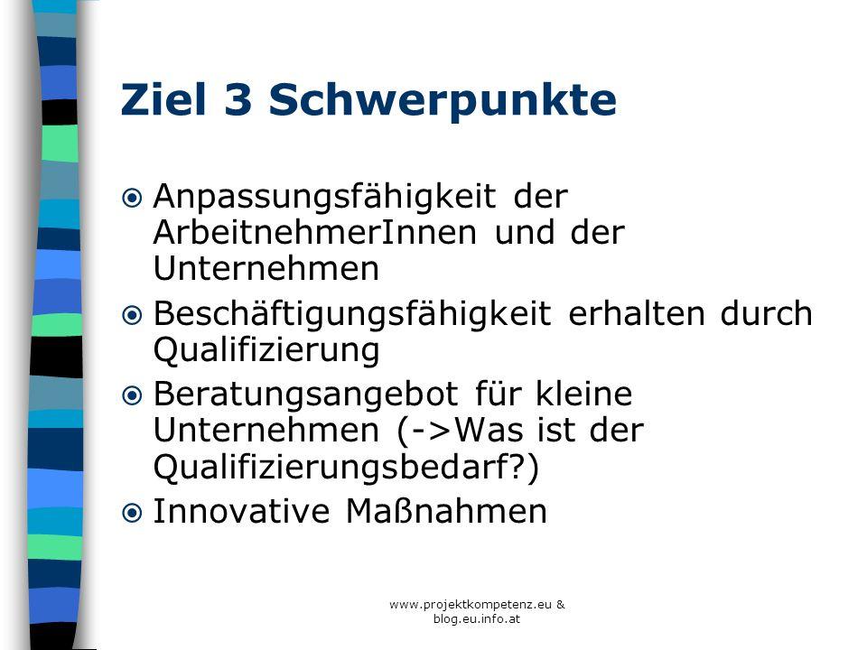 www.projektkompetenz.eu & blog.eu.info.at Ziel 3 Schwerpunkte Anpassungsfähigkeit der ArbeitnehmerInnen und der Unternehmen Beschäftigungsfähigkeit er