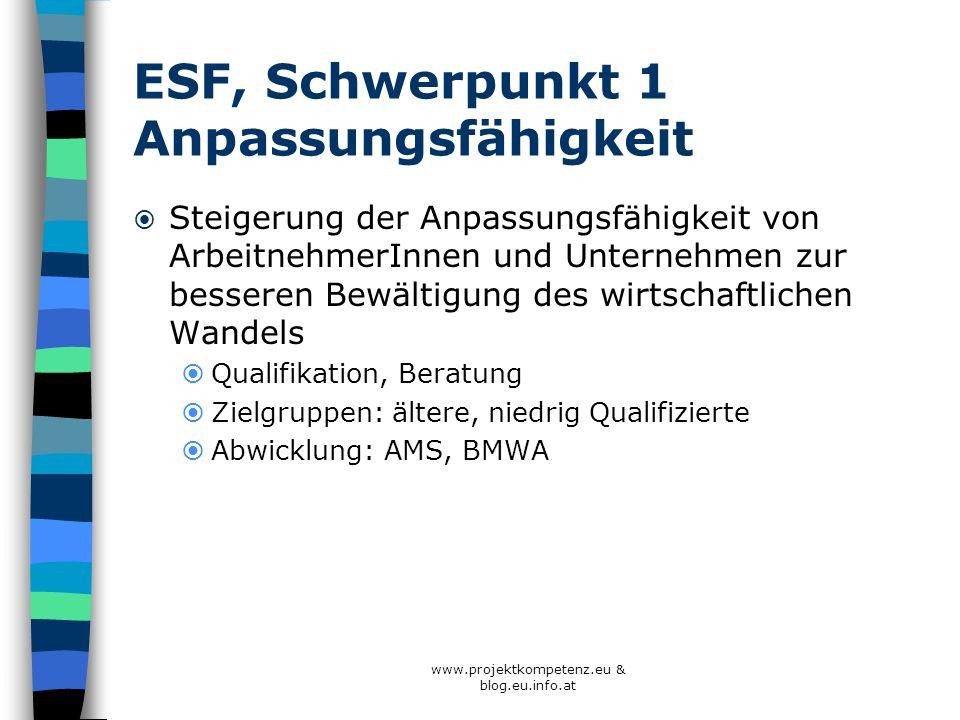ESF, Schwerpunkt 1 Anpassungsfähigkeit Steigerung der Anpassungsfähigkeit von ArbeitnehmerInnen und Unternehmen zur besseren Bewältigung des wirtschaf