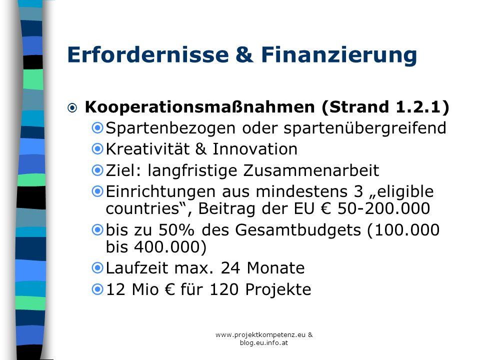 Erfordernisse & Finanzierung Kooperationsmaßnahmen (Strand 1.2.1) Spartenbezogen oder spartenübergreifend Kreativität & Innovation Ziel: langfristige