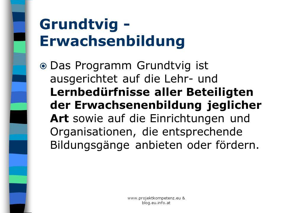 Grundtvig - Erwachsenbildung Das Programm Grundtvig ist ausgerichtet auf die Lehr- und Lernbedürfnisse aller Beteiligten der Erwachsenenbildung jeglic