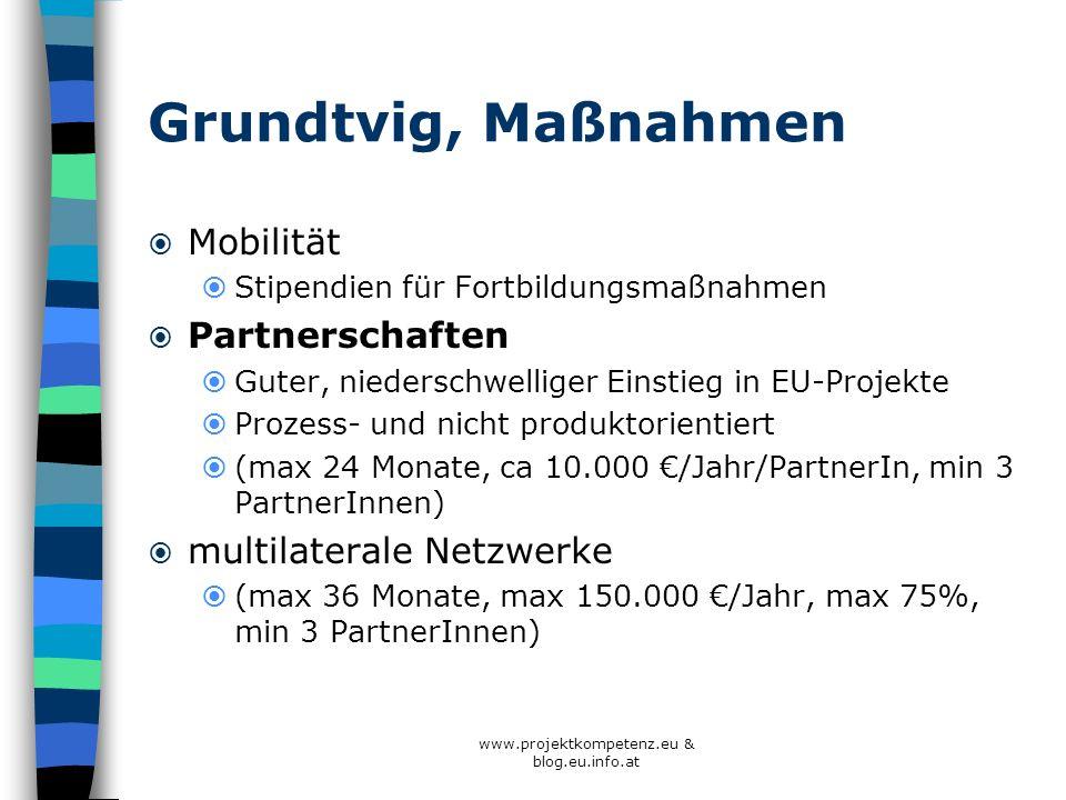 Grundtvig, Maßnahmen Mobilität Stipendien für Fortbildungsmaßnahmen Partnerschaften Guter, niederschwelliger Einstieg in EU-Projekte Prozess- und nich