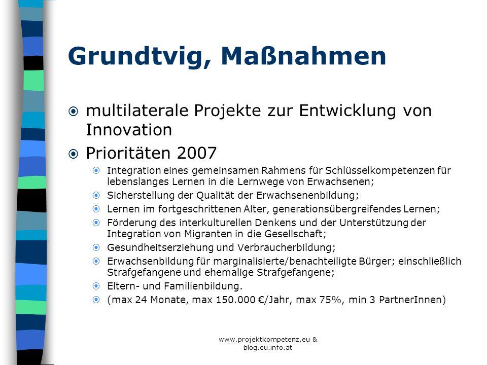 Grundtvig, Maßnahmen multilaterale Projekte zur Entwicklung von Innovation Prioritäten 2007 Integration eines gemeinsamen Rahmens für Schlüsselkompete