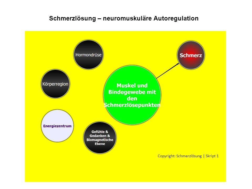 Copyright: Schmerzlösung | Skript 1 Schmerzlösung – neuromuskuläre Autoregulation