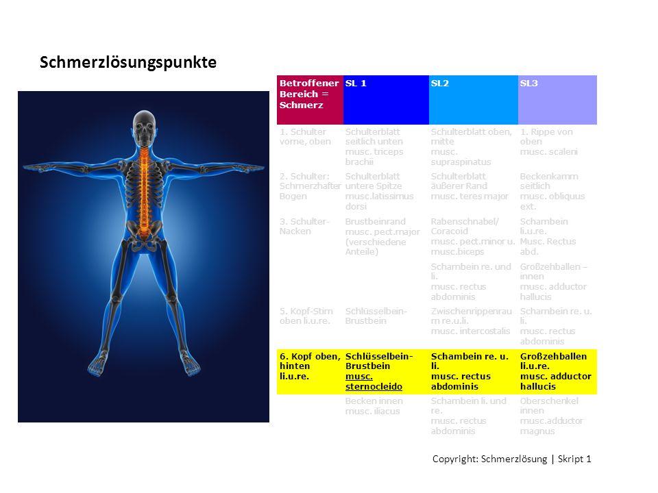 Schmerzlösungspunkte Betroffener Bereich = Schmerz SL 1SL2SL3 1. Schulter vorne, oben Schulterblatt seitlich unten musc. triceps brachii Schulterblatt